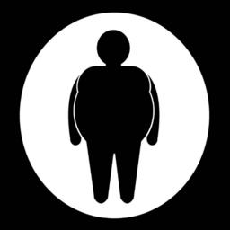 胖子行动健康瘦身v1.0安卓版