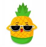 菠萝贷款新入口v1.0安卓版