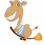 骆驼口袋借款v1.5.0安卓版