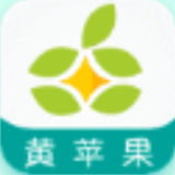 黄苹果appv1.0最新入口