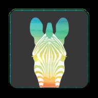 趣行斑马APPV1.0.0安卓版