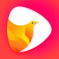 鸽迷短视频APPv1.0安卓版