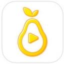 pear雪梨免邀请码v1.0.1安卓版