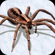 蜘蛛模拟器2019无限生命汉化版v1.0安卓版