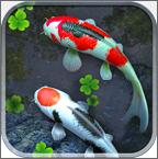 鱼池壁纸免费版v1.6.3安卓版