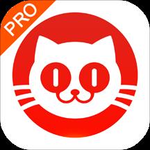 猫眼票房专业版appv5.6.0安卓版