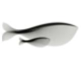 当归app国风手账记录软件v1.3