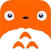 龙猫赚钱免邀请码下载v1.0安卓版