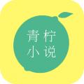 青柠小说aoo无限次数阅读下载v1.0安卓版