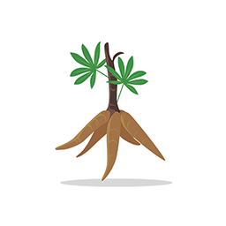 樟树中药材电商购物appv1.0.0