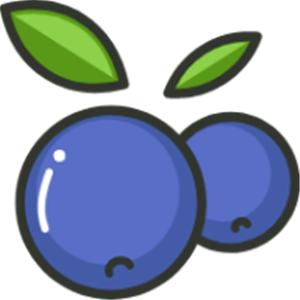 蓝莓素颜照片appv1.3