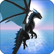 龙模拟器3D破解版中文v1.091