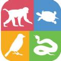 拍照识动物品种app最新版v1.0