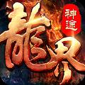 龙界神途九游礼包版v2.0安卓版