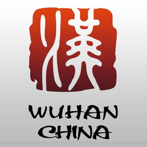 武汉消费券领取发放平台v1.9.9.13最新版