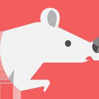 分红鼠走路赚钱appv1.0.0