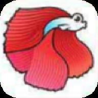 斗鱼快讯(新闻赚钱)appv1.0安卓版