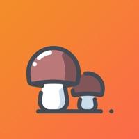 小蘑菇打字��Xappv1.0�t包版