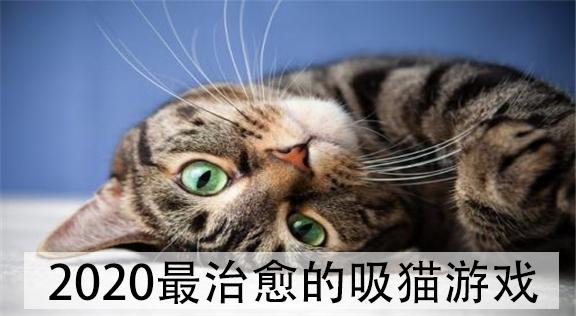 最治愈的吸猫游戏