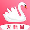 天鹅资讯红包版v1.0红包版