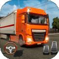 真实卡车模拟驾驶游戏中文破解版v1.0中文版
