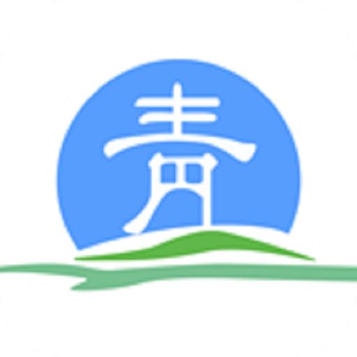 青海青松办app手机版v1.13安卓版