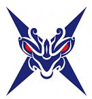 霸耀��游�蚱脚_v1.0安卓版