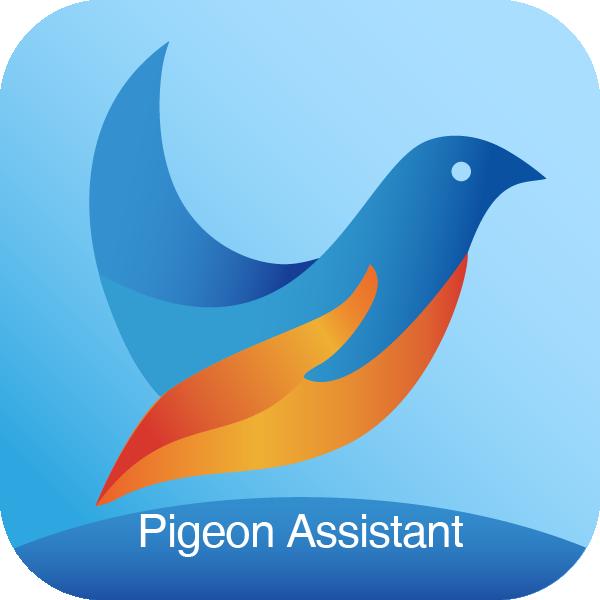 青鸽网(赛事直播)appv3.8.1最新版