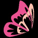 花蝶浏览器官方2021最新版v1.6安卓版
