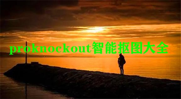 proknockout智能抠图大全