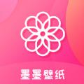 墨墨壁纸app高清版v1.0.0安卓版