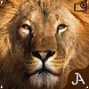 多人游猎游戏中文安卓版v21.5.2安卓版