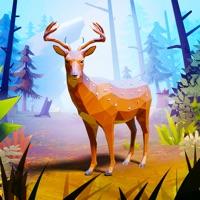 爱护动物之王游戏中文安卓版v1.0安卓版
