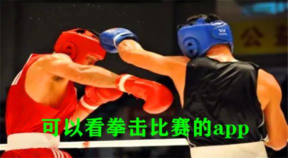 可以看拳击比赛的app
