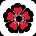 黑樱游戏盒子app手机安卓版v2.1安卓版