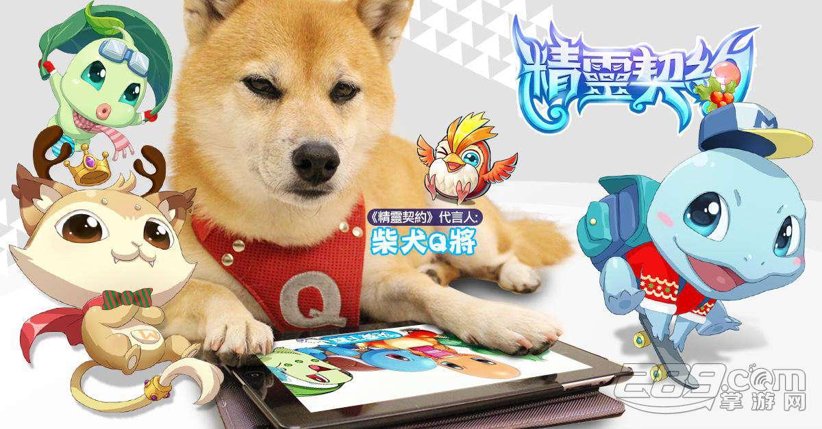 2014年度最萌日系手游!柴犬q将激萌代言!精灵契约双版本正式上架!