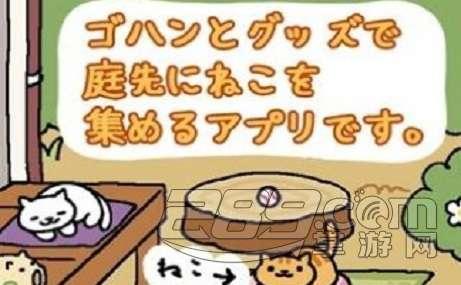 貓咪收集每日暗號  5月30日領取禮包暗號