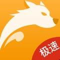 视频加速狗浏览器安卓版