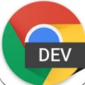 Chrome Dev 官方版