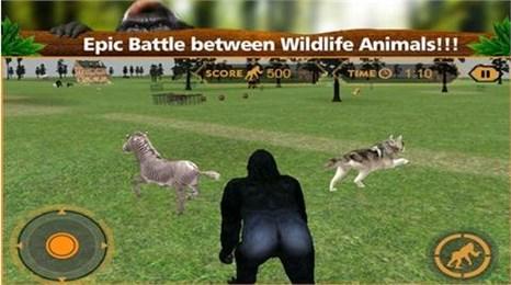 野生大猩猩模拟器破解版