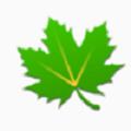 绿色守护破解版V2.9