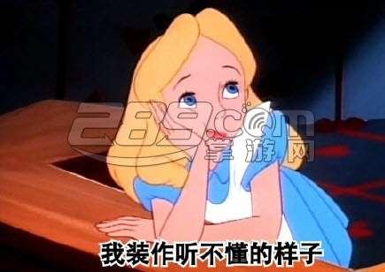 样子表情包出自于金星在《金星秀》中说的一段经历图片