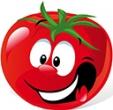 番茄直播app v1.0
