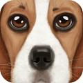 终极狗狗模拟器 v1.1