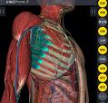 3Dbody解剖手术刀安卓版 v1.0