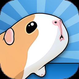 豚鼠桥!安卓版 v1.0